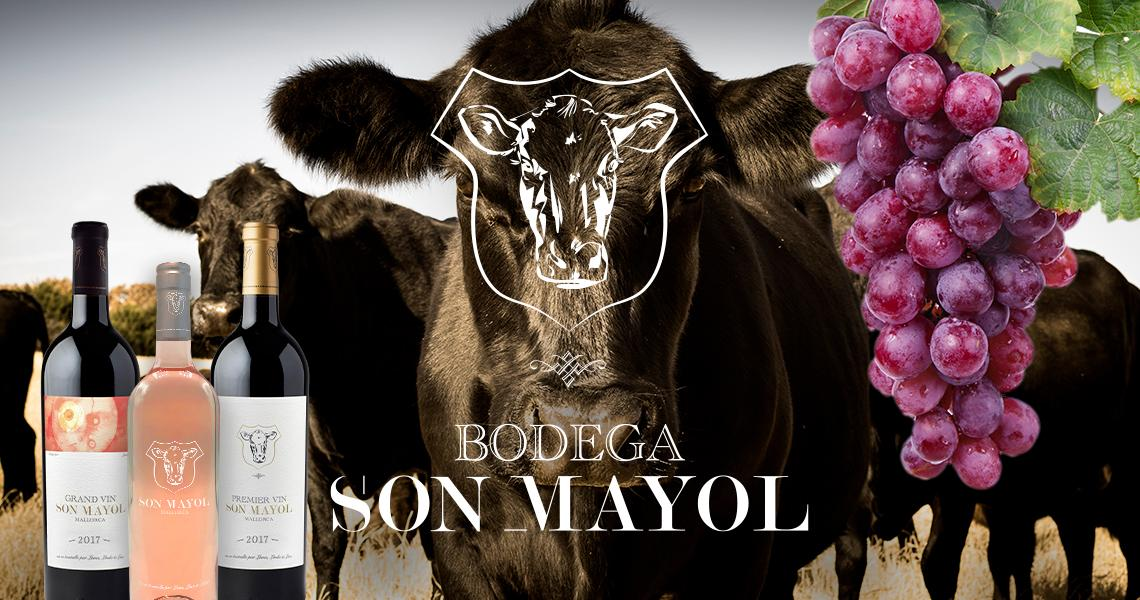 BODEGA SON MAYOL - IN SEARCH OF THE PERFECT WINE